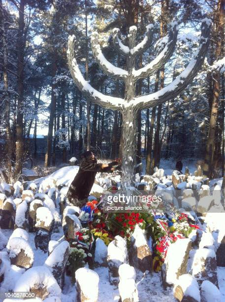 Visitors lay flowers by a large menorah monument at an memoral for the victims of the Shoah 75 years ago in Rumbala Latvia 29 November 2016 The...