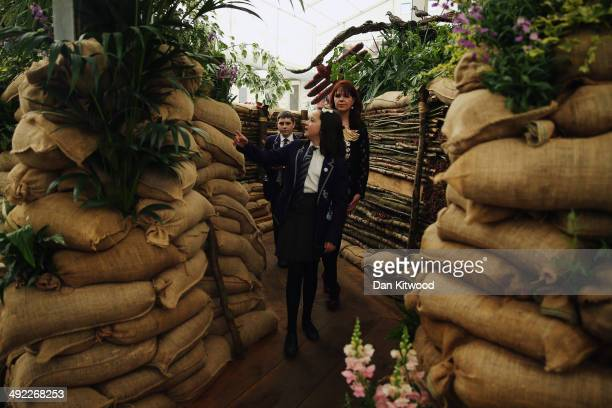 Visitors look around a World War One themed garden display on the Birmingham City Council garden at the 2014 Chelsea Flower Show at Royal Hospital...