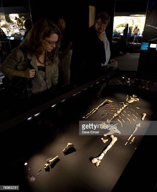 Visitors look at 32 million year old fossilized remains of Lucy the most complete example of the hominid Australopithecus afarensis at the Houston...