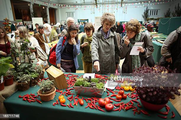 Visitors look at a display of vegetables at the Royal Horticultural Society Harvest Festival Show on October 9 2013 in London England The nation's...