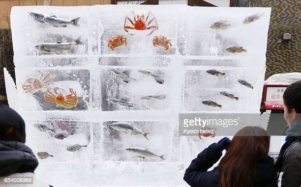 Visitors look at fish frozen in ice blocks at the Sapporo Snow Festival in the Hokkaido city on Feb 6 just months after an amusement park in...