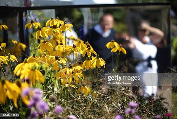 Visitors look at floral displays at the Royal Horticultural Society Flower Show at Wisley Gardens on September 2 2014 in Wisley England 40000...