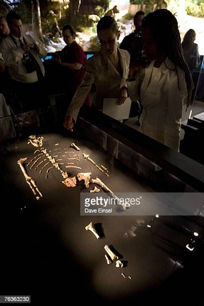 "Visitors look at the 3.2 million year old fossilized remains of ""Lucy"", the most complete example of the hominid Australopithecus afarensis, at the..."