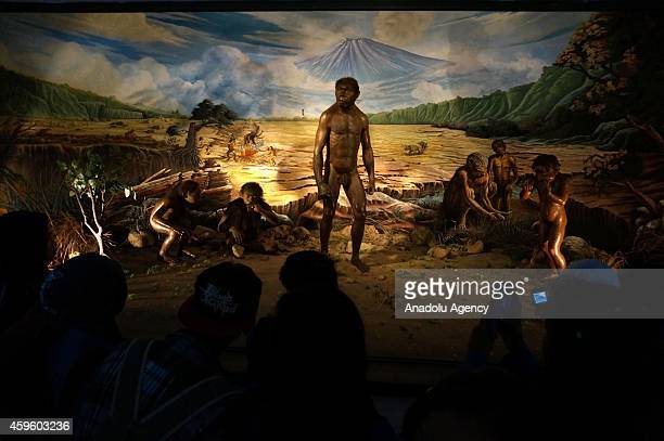 Visitors look at the diorama collection of the Sangiran Museum near Sangiran Early Man Site situated about 15 kilometers in the north of Solo town in...