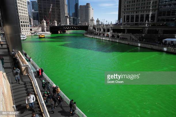 Visitors look over the Chicago River shortly after it was dyed green in celebration of St Patrick's Day on March 11 2017 in Chicago Illinois Dyeing...