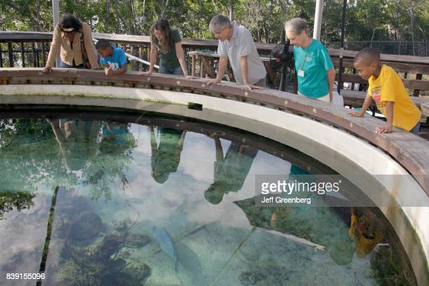 Visitors looking at a salt water tank at Gumbo Limbo Nature Center