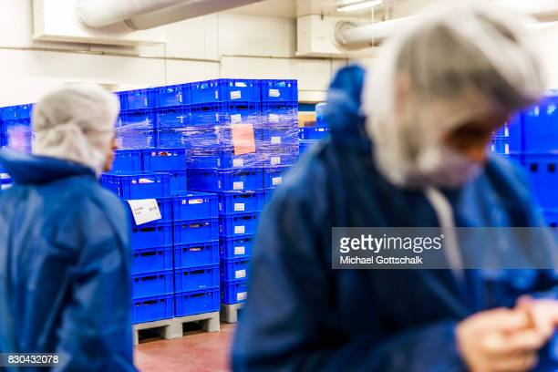 Visitors next to storage boxes at meat warehouse of German Edeka supermarket cooperative or Edeka Frische Logistikzentrum on August 09 2017 in...