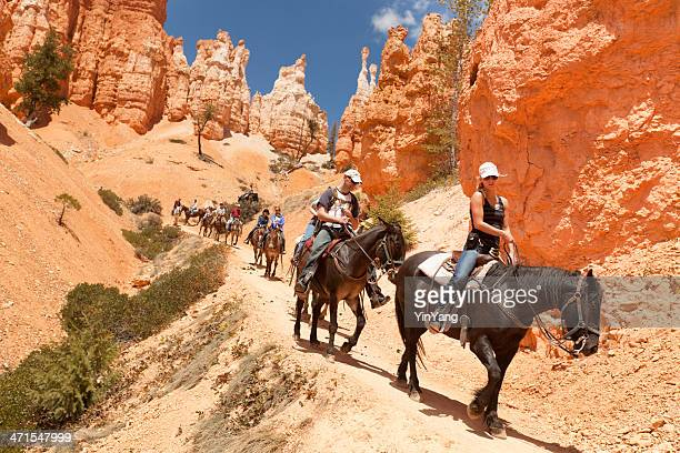 visitors on horse trail in bryce canyon national park - rock hoodoo stock pictures, royalty-free photos & images