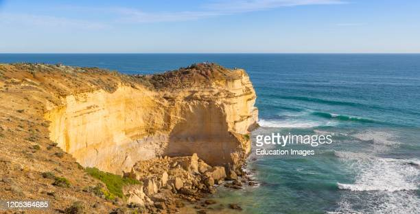 Visitors on lookout point in the Port Campbell National Park near Port Campbell Great Ocean Road Victoria Australia