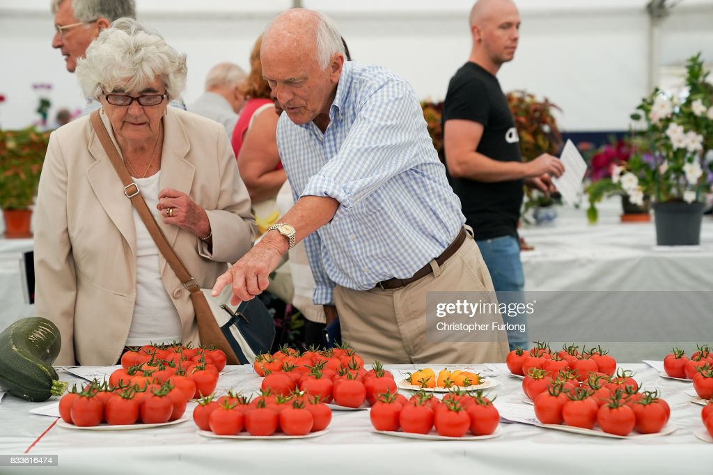 Visitors peruse the prize tomatoes at Southport Flower Show on August 17, 2017 in Southport, England. Today is the opening day of Southport Flower Show which is is held over four days. The event is the UK's biggest independent flower show, attracting 80,000 visitors each year to see the flora and fauna at Victoria Park.