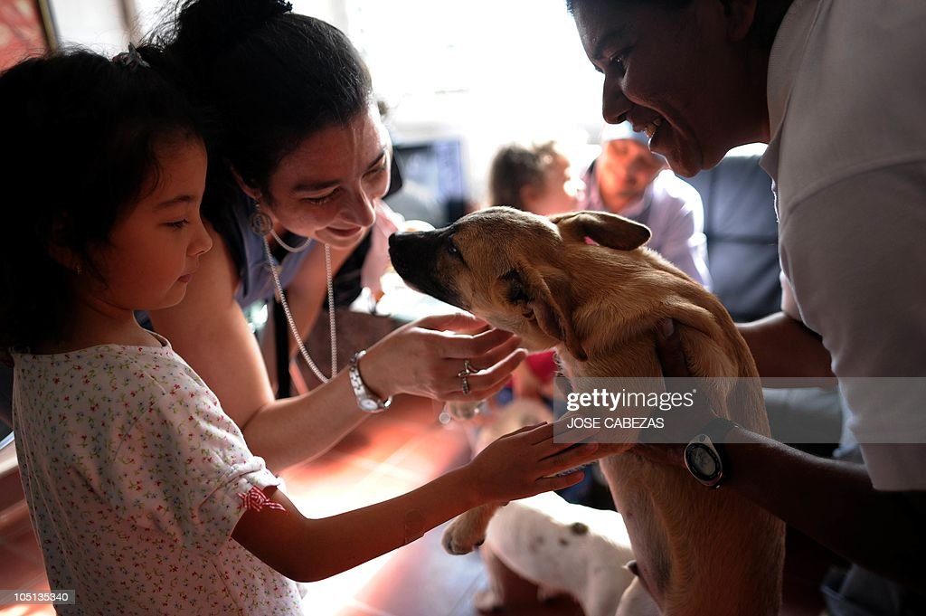 Visitors Play With A Puppy A Mistreated Dog At The Urban Dog