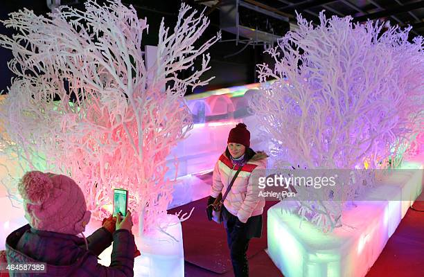 Visitors pose and take photos at Fantasy Ice World on January 23 2014 in Taipei Taiwan Ice sculptors from the famous Harbin Ice Festival create the 7...