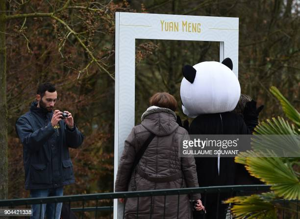 Visitors pose for photos with a panda mascot during the first public appearance of the zoo's panda cub on January 13 2018 at The Beauval Zoo in...