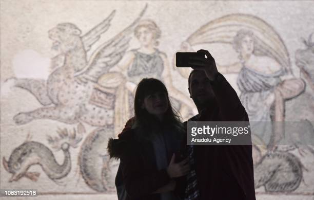 Visitors pose for taking a selfie as part of the Museum Selfie Day at Zeugma Mosaic Museum one of the largest of its kind in the world on January 16...