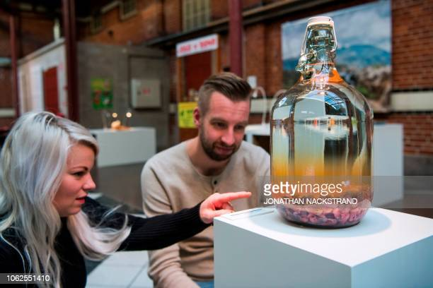 Visitors react to the Mouse Wine from China as it is on view at the Disgusting Food Museum in Malmo on November 7 2018 Cheese teeming with squirming...