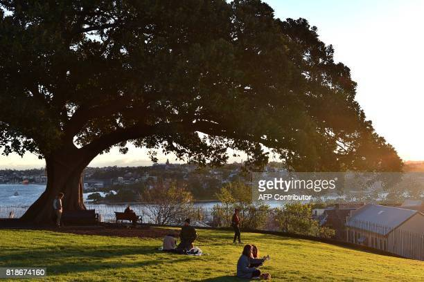 Visitors spend their afternoon at Observatory Hill to take the view of Sydney's iconic landmark Harbour Bridge at sunset on July 19 2017 / AFP PHOTO...