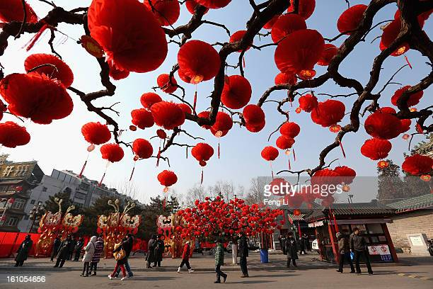 Visitors stroll near the trees decorated with red lanterns ahead of Chinese New Year celebrations during the opening ceremony of the Spring Festival...