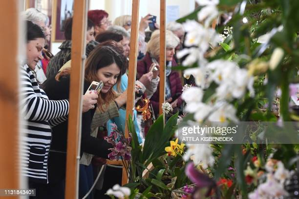 Visitors take orchids in picture on March 21 2019 at the Museum and Library of Hungarian Agriculture during the Orchids of Asia exhibition in Budapest