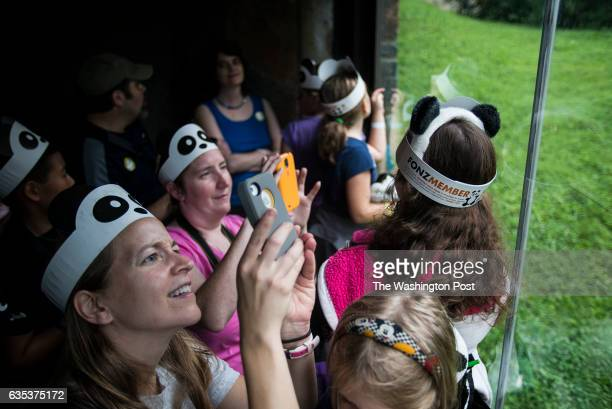 Visitors take pictures of Bao Bao at the Bao Bao's first birthday celebration in Giant Panda Habitat at Smithsonian's National Zoo on Saturday August...