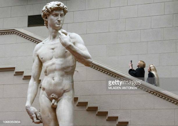 Visitors take pictures of the copy of Michelangelo's David at the Pushkin State Museum of Fine Arts in Moscow on December 4 2018 / RESTRICTED TO...