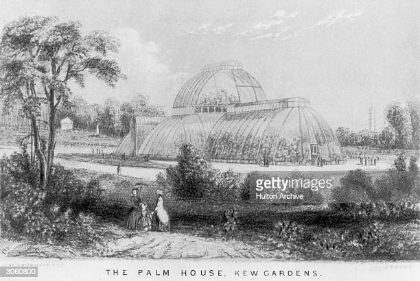 Visitors to Kew Gardens admire famous tropical Palm House circa 1880 Engraving by J M Kronheim Co