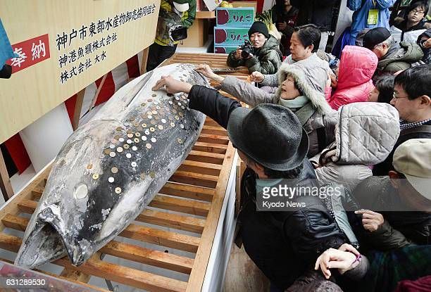 Visitors to Nishinomiya Shrine known as the head shrine of the Ebisu deity of economic fortune in the western Japan city of Nishinomiya attach coins...