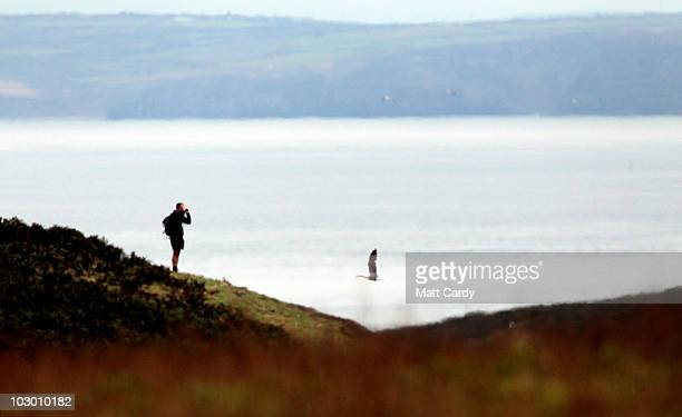 Visitors to Skomer Island walk around the footpaths on July 20, 2010 in Pembrokeshire, Wales. The island which has the biggest Puffin colony in...