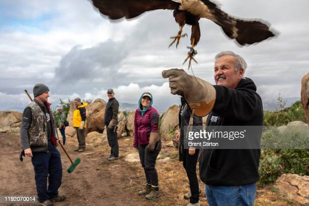 Visitors to Sky falconry experience what it is like to work with a bird of prey as they handle a Harris Hawk for the first time Sky falconry is one...