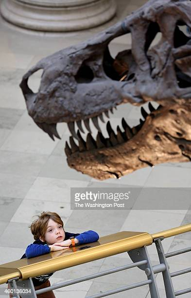 Visitors to the Field Museum of Natural History in Chicago, Illinois admire Sue, one of the largest, most extensive and best-preserved Tyrannosaurus...