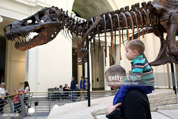 Visitors to the Field Museum of Natural History in Chicago Illinois admire Sue one of the largest most extensive and bestpreserved Tyrannosaurus rex...