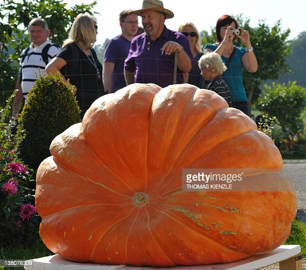 Visitors to the German Pumpkin Championships look at a giant pumpkin in the park of the Residence Castle in Ludwigsburg southwestern Germany on...