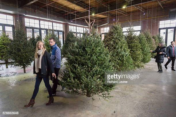 Visitors to the Knockdown Center in Queens in New York participate in the interactive artwork Suspended Forest by Michael Neff on Sunday January 17...