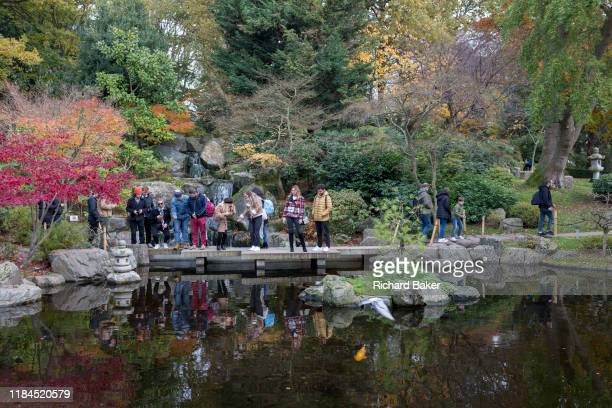 Visitors to the Kyoto Garden look into the water to see koi carp in Holland Parks Kyoto Garden on 17th November 2019 in London England The Kyoto...