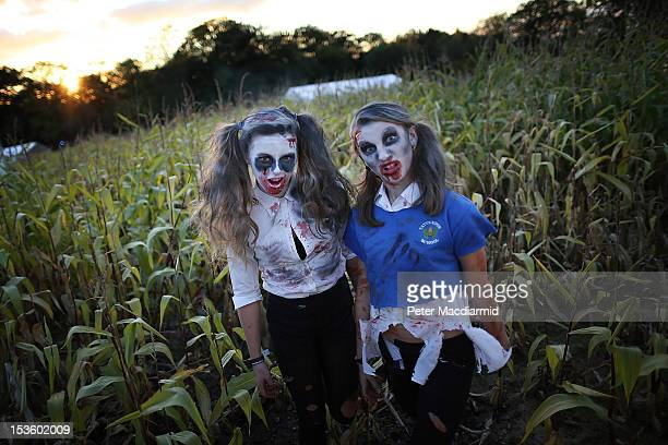 Visitors to the Shocktober Fest dressed as zombies pose at Tulleys Farm on October 6 2012 in Turners Hill England People dressed as zombies from...