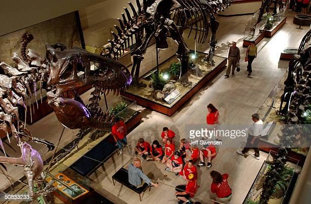 Visitors to the sit under the skeleton of a TRex in the dinosaur display room at the Carnegie Museum of Natural History May 13 2004 in Pittsburgh...