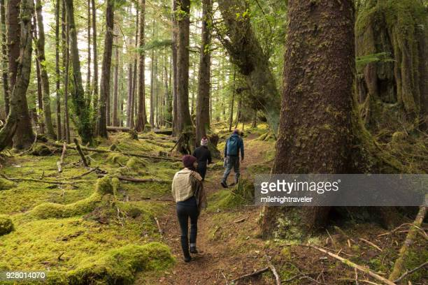 Visitors tourist explore hike Louise Island mossy forest trail Haida Gwaii British Columbia Canada