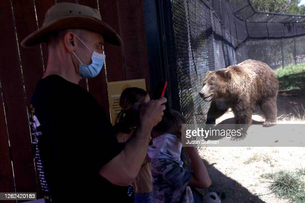 Visitors view a grizzly bear in its enclosure at the Oakland Zoo on July 29, 2020 in Oakland, California. The Oakland Zoo reopened to the public...