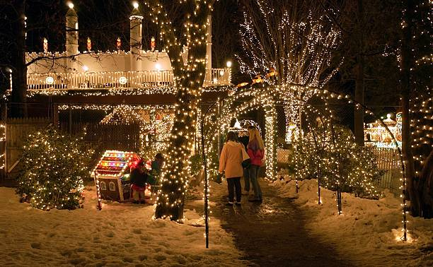 Stone Zoo Christmas Lights