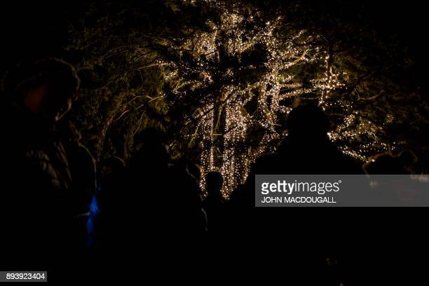 Visitors wait in front of an illuminated tree at the Christmas Garden light show in Berlin's botanical garden on December 16 2017 The show meant to...