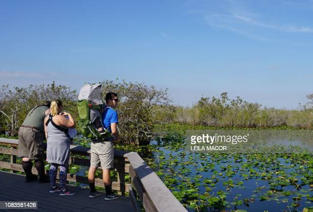 Visitors walk along the Anhinga Trail in Everglades National Park in Homestead Florida on January 16 2019 Four weeks into the longestever US...