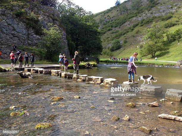 Visitors walking across the Stepping Stones on the River Dove Dovedale Peak District National Park Derbyshire UK