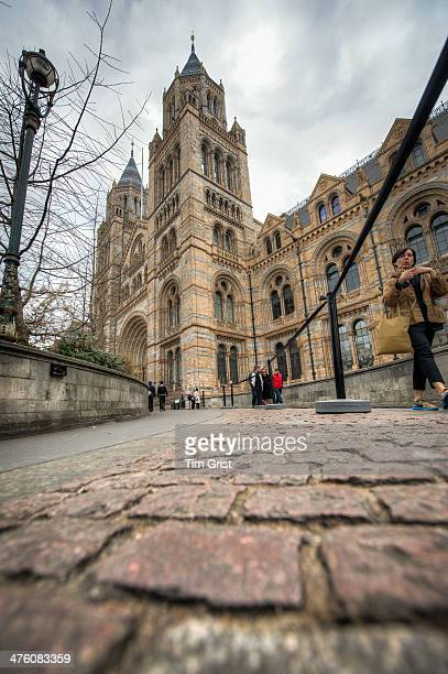 Visitors walking on the path outside the Natural History Museum, London taken from a low angle.