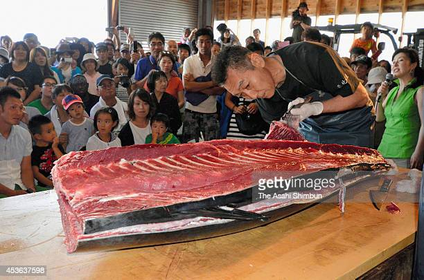 Visitors watch a tuna dismantle show during the Blue Marine Festival on August 14 2014 in Oma Aomori Japan The tuna was distributed to 1000 visitors