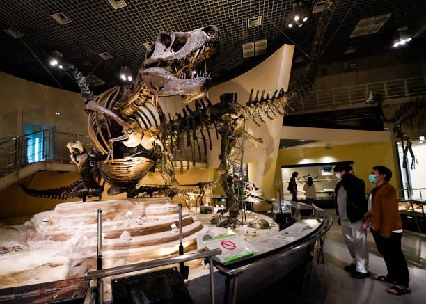 JPN: Museums To Reopen In Tokyo