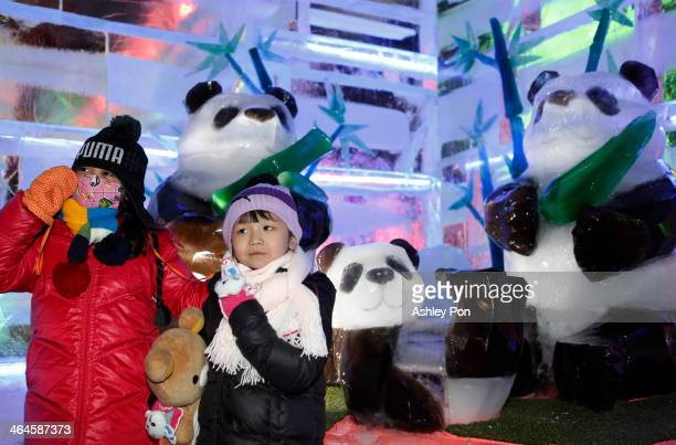 Visotors pose for a photo with giant panda ice sculptures at Fantasy Ice World on January 23 2014 in Taipei Taiwan Ice sculptors from the famous...
