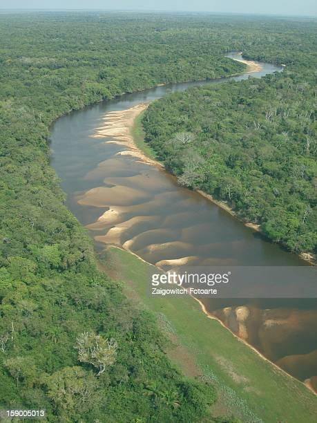 vista aérea pantanal, rio paraguai - vista aérea stock pictures, royalty-free photos & images