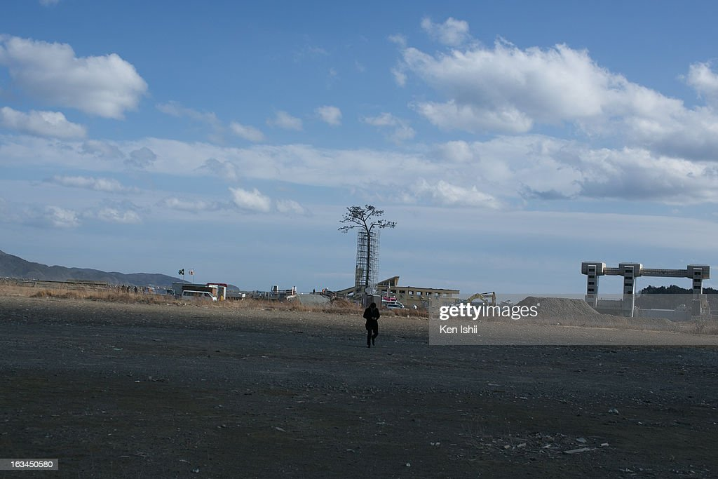 Vistor walks toward a replica of the pine tree prior to the second anniversary of the tsunami and earthquake on March 10, 2013 in Rikuzentakata, Iwate prefecture, Japan. On March 11 Japan will commemorate the second anniversary of the magnitude 9.0 earthquake and following tsunami that claimed more than 18,000 lives.