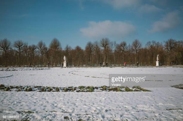 vistors at the great parterre, schönbrunn palace park, vienna, austria - vsojoy stock pictures, royalty-free photos & images