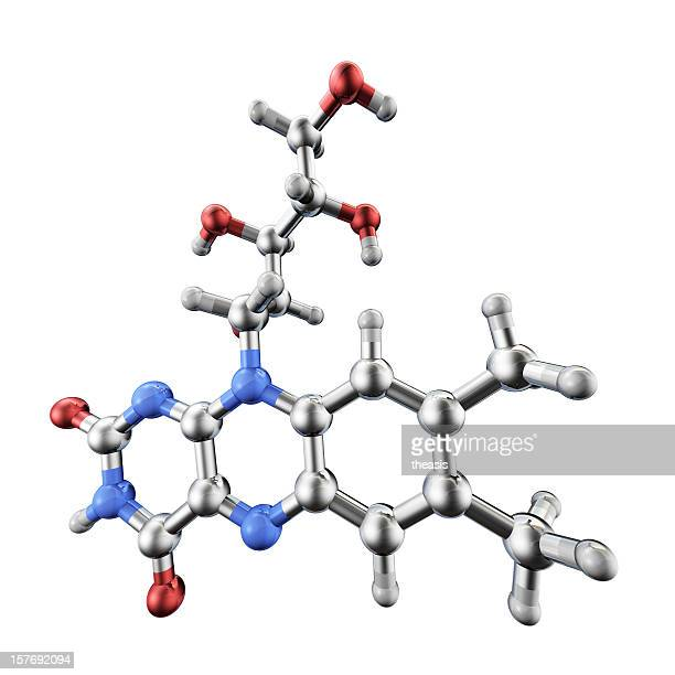 Vitamin B Model