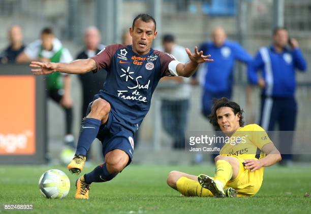 Vitorino Hilton of Montpellier and Edinson Cavani of PSG during the French Ligue 1 match between Montpellier Herault SC and Paris Saint Germain at...
